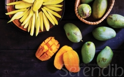 All about Mangoes